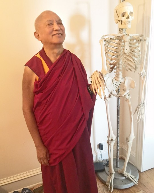 Lama Zopa Rinpoche in New York, 2015. (Photo Ven Roger Kunsang)