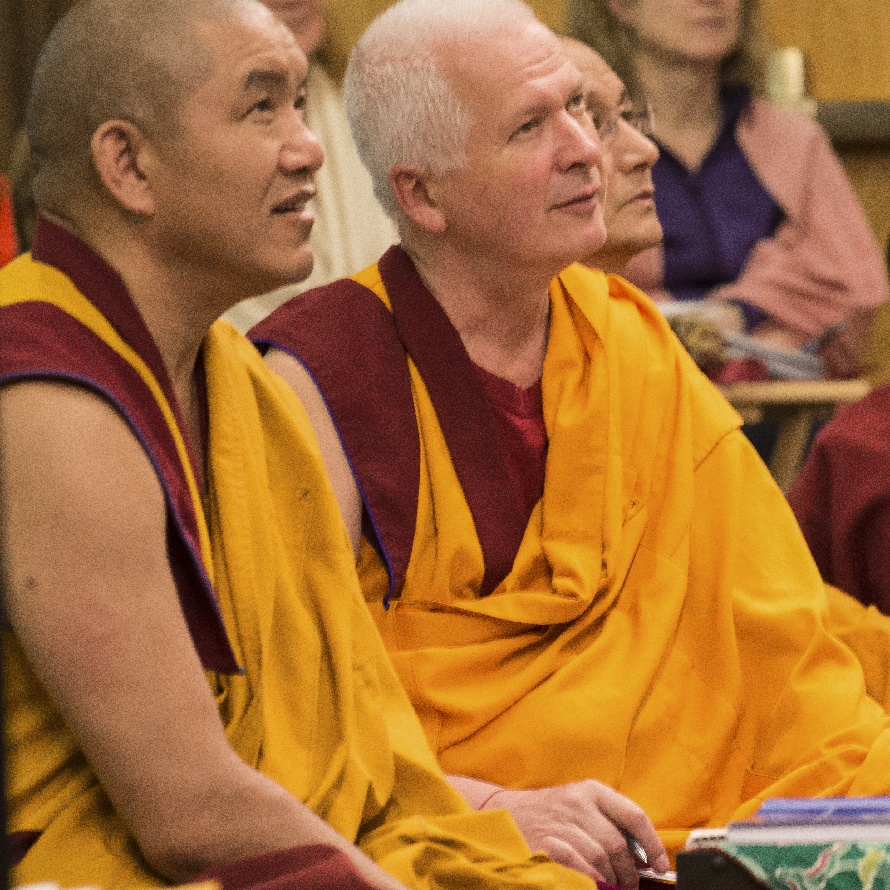 Geshe Gelek and Ven Steve watch Rinpoche teachat Light of the Path 2014. (Photo Roy Harvey)
